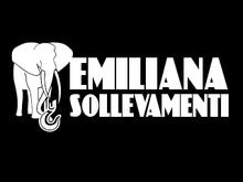 Emiliana Sollevamenti